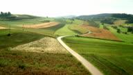 AERIAL Country Road Between Fields video