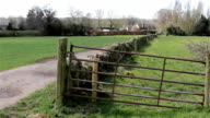 Countryside Field Fence and path - Natural Wild English Backgrounds video