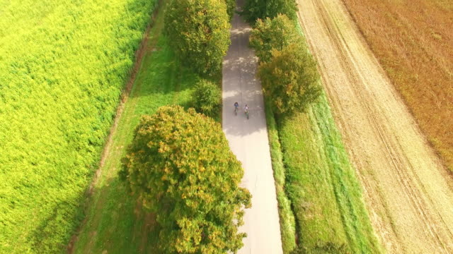 AERIAL Couple cycling on a tree lined country road video
