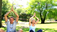 Couple doing yoga together in the park video