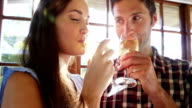 Couple drinking champagne in restaurant video