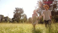 SLO MO DS Couple holding hands walking across high grass video