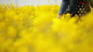 Couple hugging in the colza field on the walk video