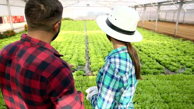 Couple In Greenhouse On Organic Farm video