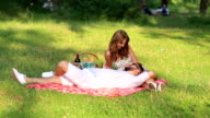 Couple in love on picnic video