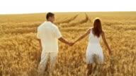 HD CRANE: Couple In Wheat video