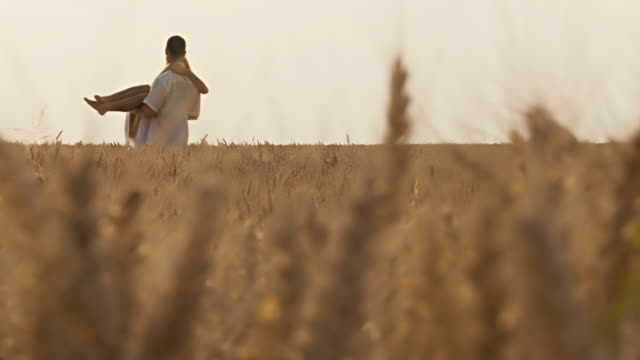 HD DOLLY: Couple in wheat video