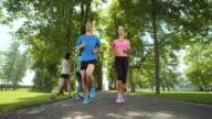 SLO MO TS Couple jogging through tree avenue video