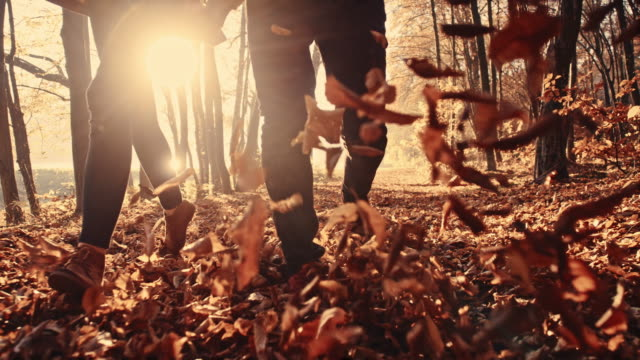 SLO MO Couple kicking dry leaves in the forest video
