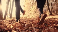 SLO MO Couple kicking dry leaves while running video