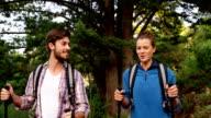 Couple nordic walking video