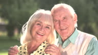 Couple of seniors outdoor. video