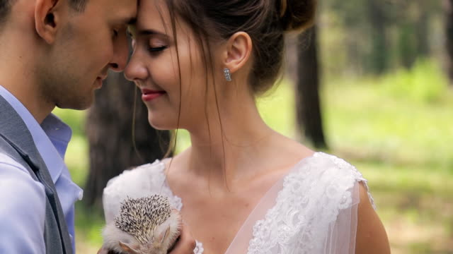 Couple on photo shoot with hedgehogs in hands kissing in wedding day video