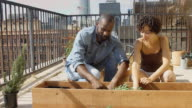 Couple Planting Herbs in Rooftop Garden video
