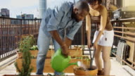 Couple Planting Herbs on Rooftop Garden video