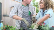Couple Planting Rooftop Garden Together video