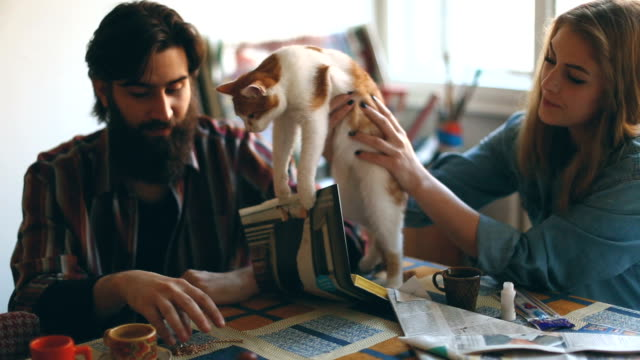 Couple playing with cat video