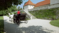DS Couple riding in a horse drawn carriage video