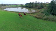 Couple riding the horses in gallop near the nature lake video