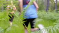 LD Couple running through the forest passing a fern video