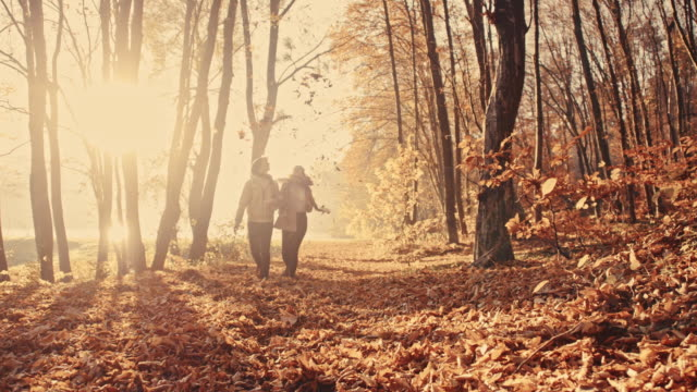 SLO MO Couple scattering leaves over themselves in the forest video