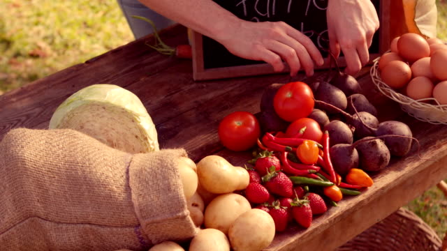 Couple selling organic vegetables at market video