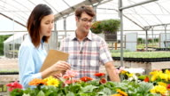 Couple shops for flowers at local nursery video