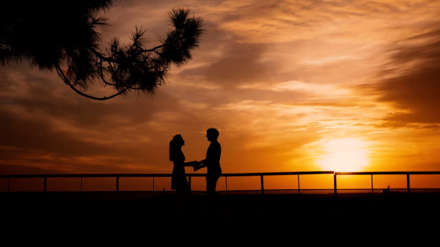 Couple silhouette at the beach sunset video