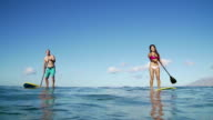 Couple Stand Up Paddling In Ocean on Summer Day video
