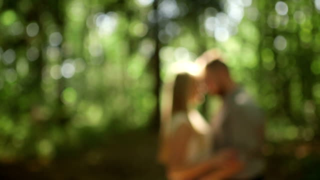MEDIUM SHOT DOLLY SHOT DEFOCUS Couple standing in forest on sunny day video