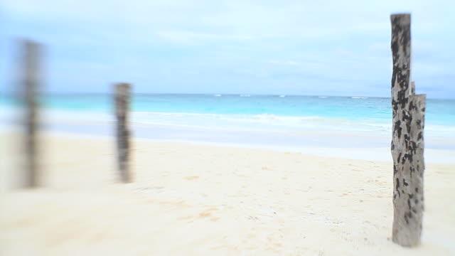 Couple stroll along tropical Caribbean beach video