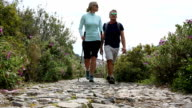 Couple walk along cobblestone pathway, talking video