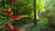 Couple walking down path in tropical jungle video