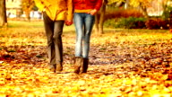 Couple walking in park. video