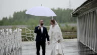 Couple walking in rainy day at terrace with umbrella video