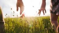 SLO MO Couple Walking In The Poppy Field video