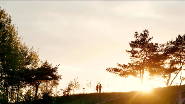 Couple walking on a hill holding hands at beautiful sunset in nature. Sun rays shine. Natural landscape, trees. Slow mo video