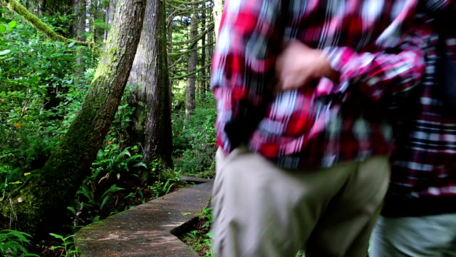 Couple Walking Pacific Rim National Park Reserve Vancouver Island video