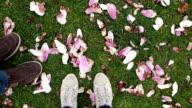 POV of couple's feet standing amongst fallen magnolia blossoms video