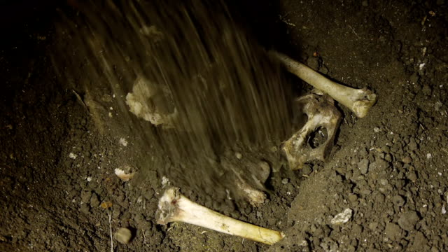 Covering Human Bones With Dirt video