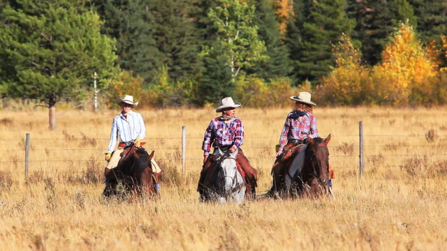 Cowboy and two cowgirls riding through the mountain foothills video