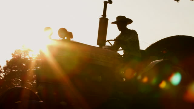Cowboy drives tractor at sunrise video