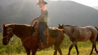 Cowboy leads horses across mountain meadow video