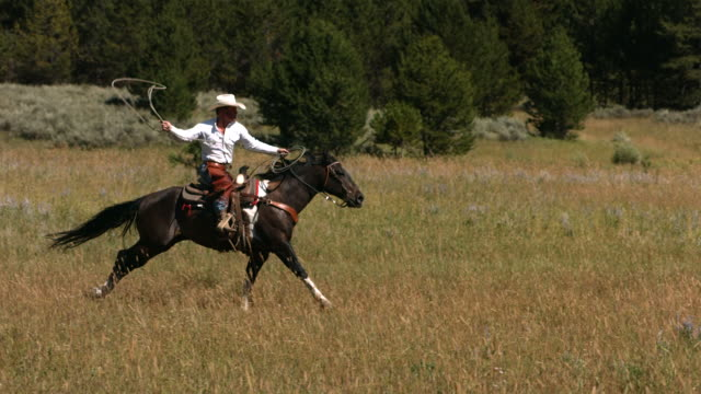 Cowboy on galloping horse swings lasso, slow motion video