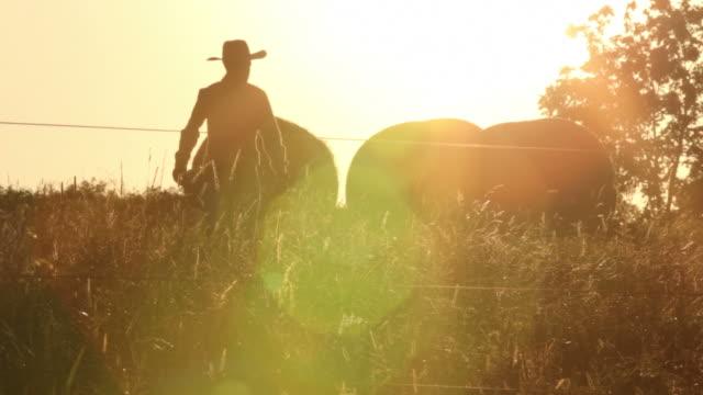 Cowboy rancher walks across field at sunrise video
