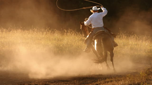 Cowboy roping at sunset, slow motion video