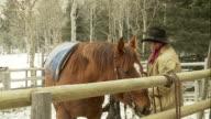 Cowboy saddles his horse video