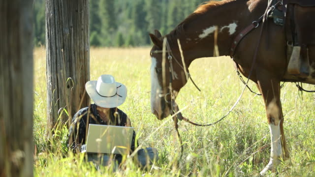 Cowboy sits by horse using laptop computer video