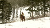 Cowboy with his horse in the snow during winter video