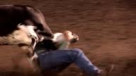 Cowboy wrestles steer video